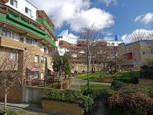 Byker, Gardens behind the Byker Wall, Northumberland © Andrew Curtis